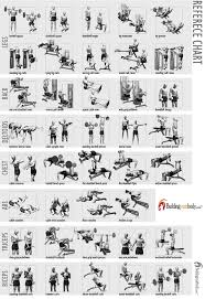black friday bodybuilding fitness is a critical part of being healthy in life you can live
