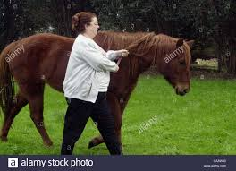 terry citro of oakley california walks candy a 23 year old horse