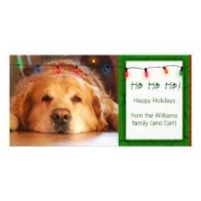 personalized pet photo cards perfect postage