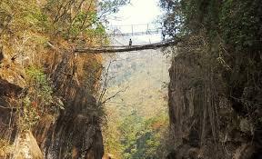 one man u0027s race to save india u0027s last remaining living root bridges