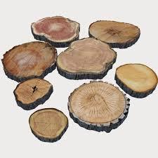 3d model wood log slices cgtrader