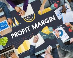profit margin how to calculate it and use it value stock guide
