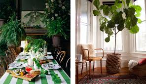 Best Indoor Plants Interior Design Indoor Plants All Over The Place U2013 All Things Designed
