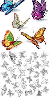 butterflies vector free stock vector art u0026 illustrations eps