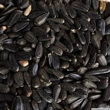 order your sunflower seeds online for best prices