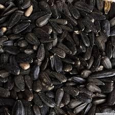 black sunflower seed 12 55kg for 14 99 25kg for 24 99