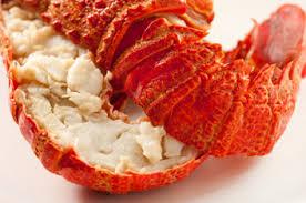 homard cuisine santé 5 bonnes raisons de manger du homard