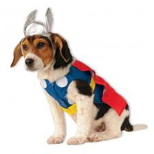 pet costumes marvel thor dog costume with same day shipping baxterboo