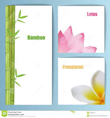 Invitation Card Formats Exotic Tropical Flowers Invitation Card Layout Stock Image Image