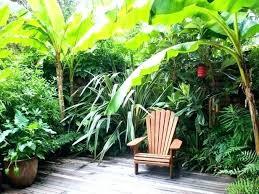 Tropical Backyard Ideas Tropical Landscape Plans Tropical Landscape Design Tropical