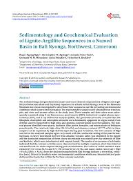 Sedimentology And Geochemical Evaluation Of Sem Photograph Low Magnification Scale Shown Illustrating The