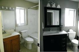 Small Bathroom Reno Ideas Bathroom Remodel Small Small Bathroom Design Ideas On A Budget