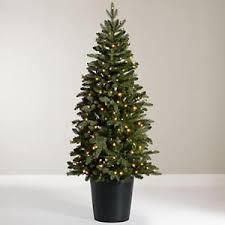bala pre lit potted fir tree slim indoor outdoor