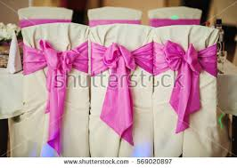 bows for wedding chairs rows chairs empty pink stock images royalty free images vectors
