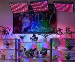 led grow lights erligpowht 45w led grow light review