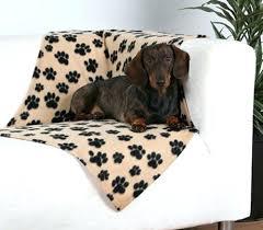 canap pour petit chien pas cher canape pour petit chien pas cher canape pour petit chien pas cher