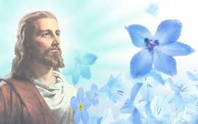 jesus images jesus a miracle hd wallpaper and background photos