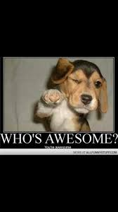 You Are Awesome Meme - inspirational 29 you are awesome meme wallpaper site wallpaper