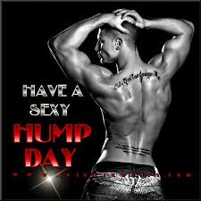 Sexy Hump Day Memes - have a hump day graphics quotes comments images greetings