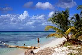 saona island in dominican republic u2013 a trip to the tropical paradise