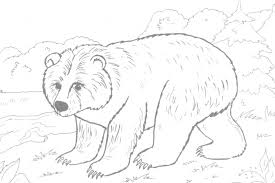 brown bear coloring page pages corduroy the printable coloring