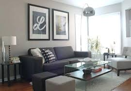 Curtains To Go With Grey Sofa Grey Best Gray Decor Ideas On Living