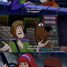 Velma Meme - daphne velma mention the embarrassing fact the gang wears the same