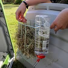 Rabbit Hutch Set Up Eglu Go Rabbit Hutch Rabbit Products Omlet