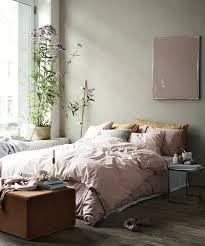 plante dans la chambre 1001 conseils et idées pour une chambre en et gris sublime