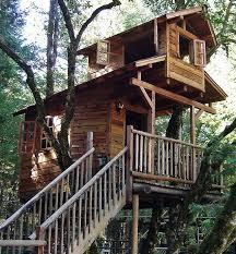 Cool Tree Houses 104 Best Tree House Ideas Images On Pinterest Treehouses Kid