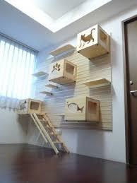 cat wall furniture cat box furniture foter