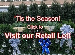 wholesale trees wholesale wreaths