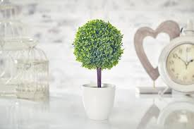 topiary trees topiaries artificial uncategorized best and plants