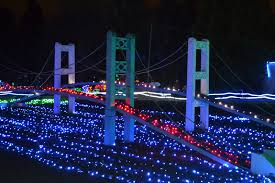 Zoo Lights Seattle by The Outlaw Gardener On The Seventh Day Of Christmas Zoo Lights