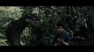 film blu thailand vengeance blu ray