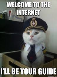 Internet Meme Cat - the complete hiss tory of cats on the internet