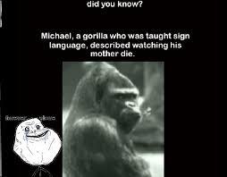 Ape Meme - forever alone ape meme by cjbridges memedroid