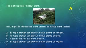 native plant species ecology test review dr bertolotti ppt video online download