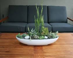 Indoor Modern Planters Outstanding Indoor Succulent Planter 75 Indoor Succulent Wall