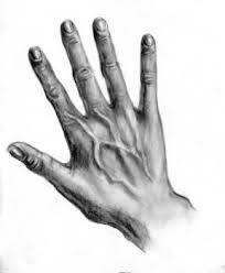 best 25 pencil sketch online ideas on pinterest a level courses