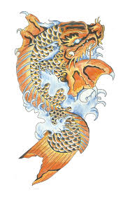 koi fish dragon tattoo design photos pictures and sketches