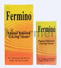 Obat Kapsul Cacing Tanah jual fermino kapsul ekstrak cacing tanah 40 kapsul obat tifus
