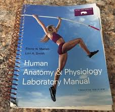 Human Anatomy Physiology Laboratory Manual Pdf Human Anatomy And Physiology Laboratory Manual 7th Edition