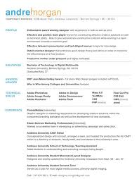 What To Put In A Job Resume by What To Put In Your Resume What Are Things To Put In Your Resume