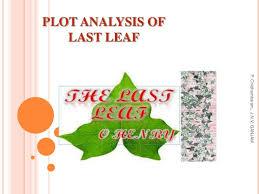 plot analysis of last leaf