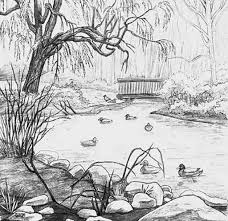 drawing scenery for beginners duck pond drawing google search
