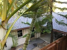 the windsurfer cottage by kailua beach guesthouse for rent in