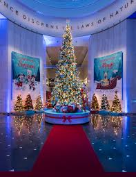the most beautiful trees and ornaments at the museum of science