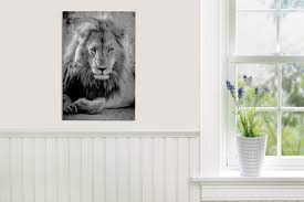 wall decor online south africa decorating ideas