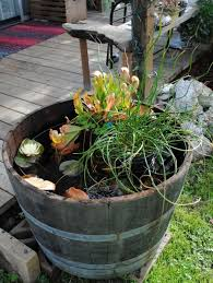 16 mini water garden inspirations to refresh the outdoor décor